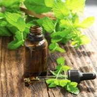 Peppermint essential oil Manufacturer