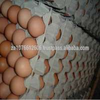 Fresh Brownwhite Eggs