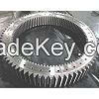 Involute Spur Gear Ring Manufacturer