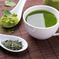 Hand-pick Loss Weight Green Tea