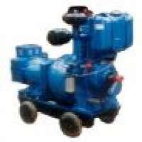 Diesel Generating Sets Diesel Engine & Pump Sets Manufacturer