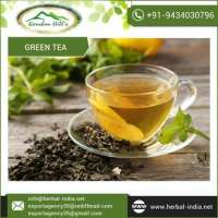 Natural Green Tea  Manufacturer