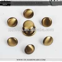 Brushed mushroom head rivet Manufacturer