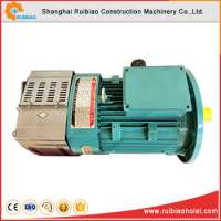 Double cage electric hoist motor