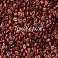 Matured cocoa beans Manufacturer