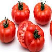 Fresh vegetables Manufacturer