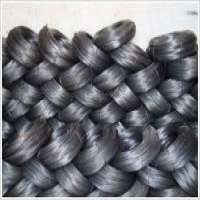 Black wire netting Manufacturer