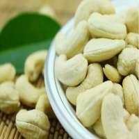 Roasted Cashew /Cashew Nuts/ Cashew Kernels For Wholesale
