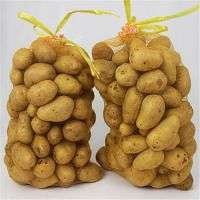 Leno pp pe plastic tubular raschel mesh garlic onion bags packaging vegetables fruits Manufacturer