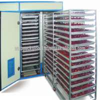 Commercial Drying Oven