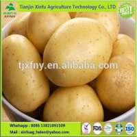 crop fresh potato