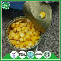 sweet corn canned  Manufacturer