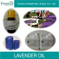 100% Natural Lavender Oil  Manufacturer