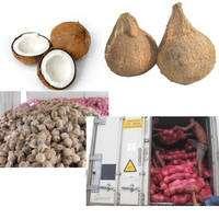 Fresh Semi Husk Coconut
