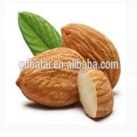 Almond Nuts Almond Kernel Almond  Manufacturer