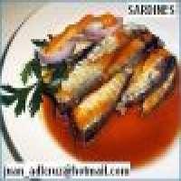 Sardine in tomato sauce tall tin 425grs Manufacturer