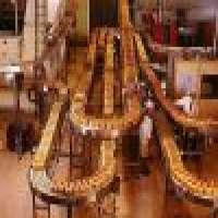 Food conveyor system Manufacturer