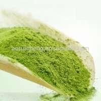 Health care food natural matcha green tea Manufacturer