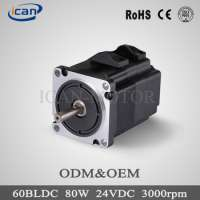 high power electric motor