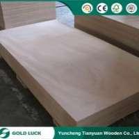 First grade marine phenolic plywood constructionbuilding 1220x2440mm Manufacturer