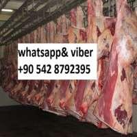 frozen beef meat Manufacturer