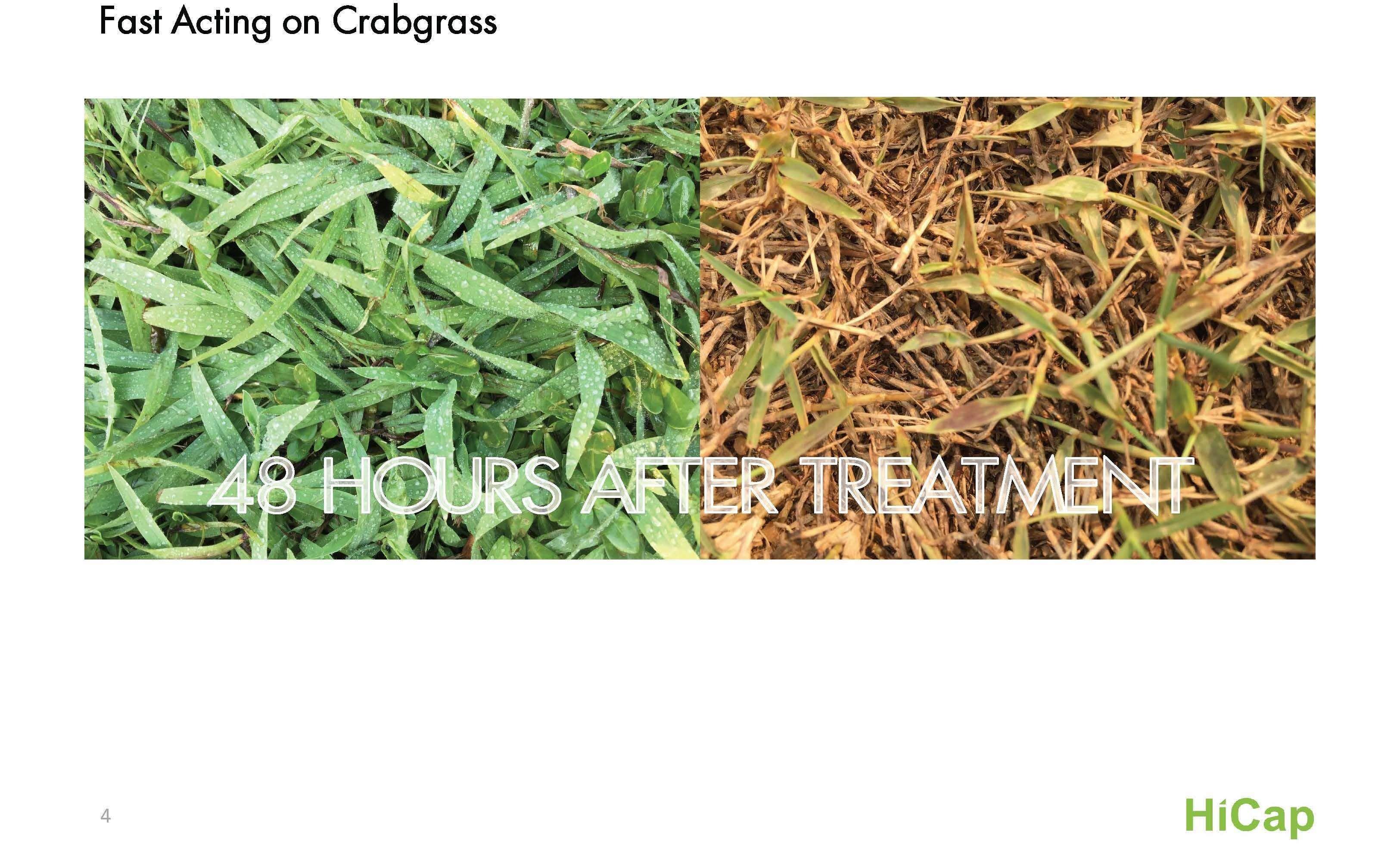 Raute (Post-emergent crabgrass control herbicide)