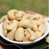 Coated charcoal  roasted cashew  Manufacturer