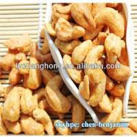 Salted flavour Cashew Nuts Manufacturer