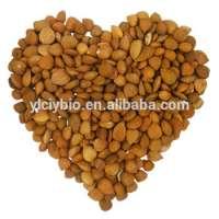 Pure natural Almond seed P.E. amygdalin Manufacturer