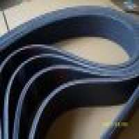Multiple Vribbed belt Manufacturer
