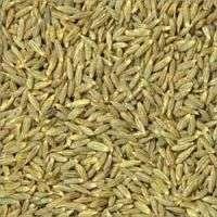Spices Ground &amp blended  Manufacturer