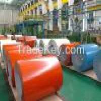 PREPAINTED Galvanized Steel Sheet in Coil Manufacturer