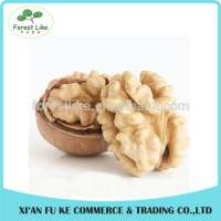 Fresh Organic Dried Fruit Delicious Nuts Walnut Manufacturer