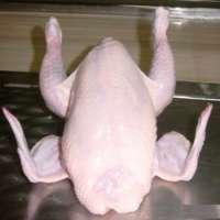 Boneless Halal Chicken Manufacturer