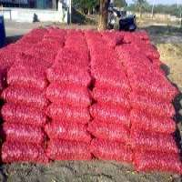 Red onion Manufacturer