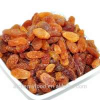 Instant snack pure sultana raisins green raisin buyers Manufacturer