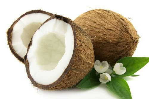 Raw Coconuts Manufacturer