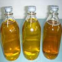 Ginger Oil Manufacturer