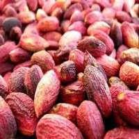 Fresh Pistachio Nuts Manufacturer