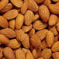High Quality Raw and Roasted Almond nuts with Best Price Manufacturer