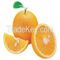 Canned Mandarin Oranges Manufacturer