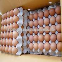 Fresh Brown Table Eggs Chicken Eggs In Fresh Brown Chicken Eggs Manufacturer