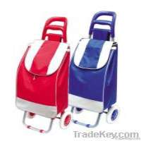 Shopping trolley bag Manufacturer