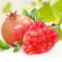 pomegranate is The fresh fruit  Manufacturer