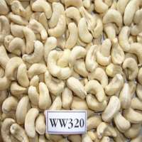 Raw Cashew Nuts Manufacturer