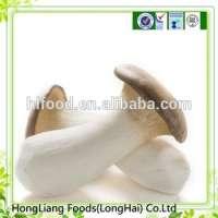 fresh King oyster mushroom Manufacturer