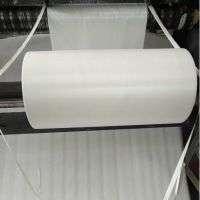 PTFE Membrane Filter Micron Micropore Film Manufacturer