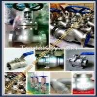 Stainless steel valves Manufacturer