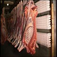 Frozen Meat Beef Offals Buffalo Meat Manufacturer