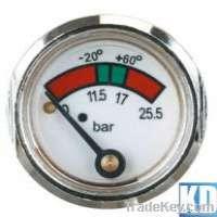 Diaphragm pressure gauge Manufacturer